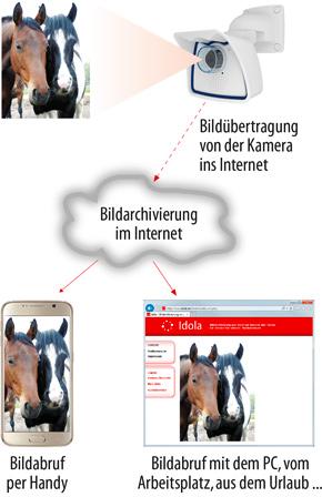 Das Idola-Prinzip: Bildübertragung von der Kamera ins Internet - Bildspeicherung im Internet auf dem Idola-Server - Bildabruf per Browser oder Handy